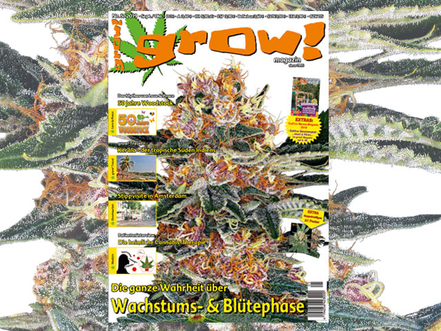 grow! 05-19 Cover
