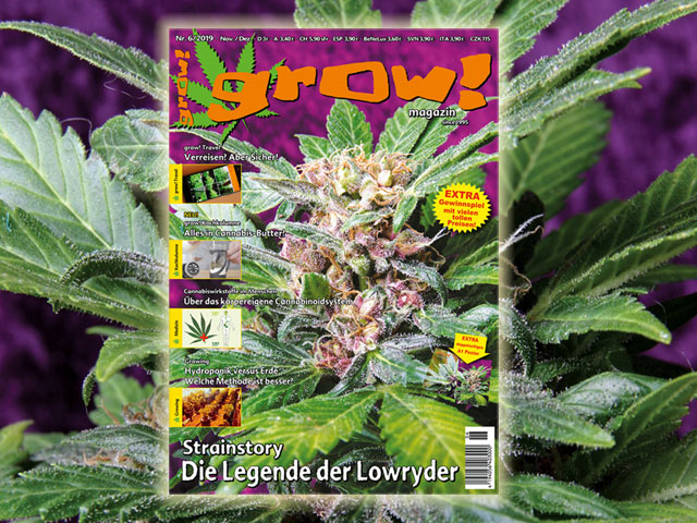 grow! 06-19 Cover