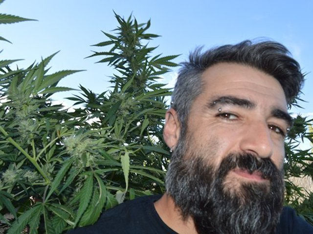 "Ein Interview mit Pato Jopos, ""chief of strains"" bei SoulBreeders, Granada, Spanien"